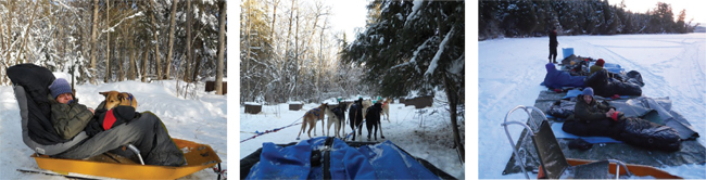 well-cushioned-sled-sleeping-under-stars